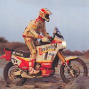Cavandoli 1991