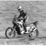 Magnaldi 1991-1