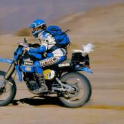 mingels-1982