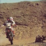 Findanno 1985-1