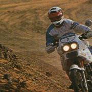 Zotti-1989-a