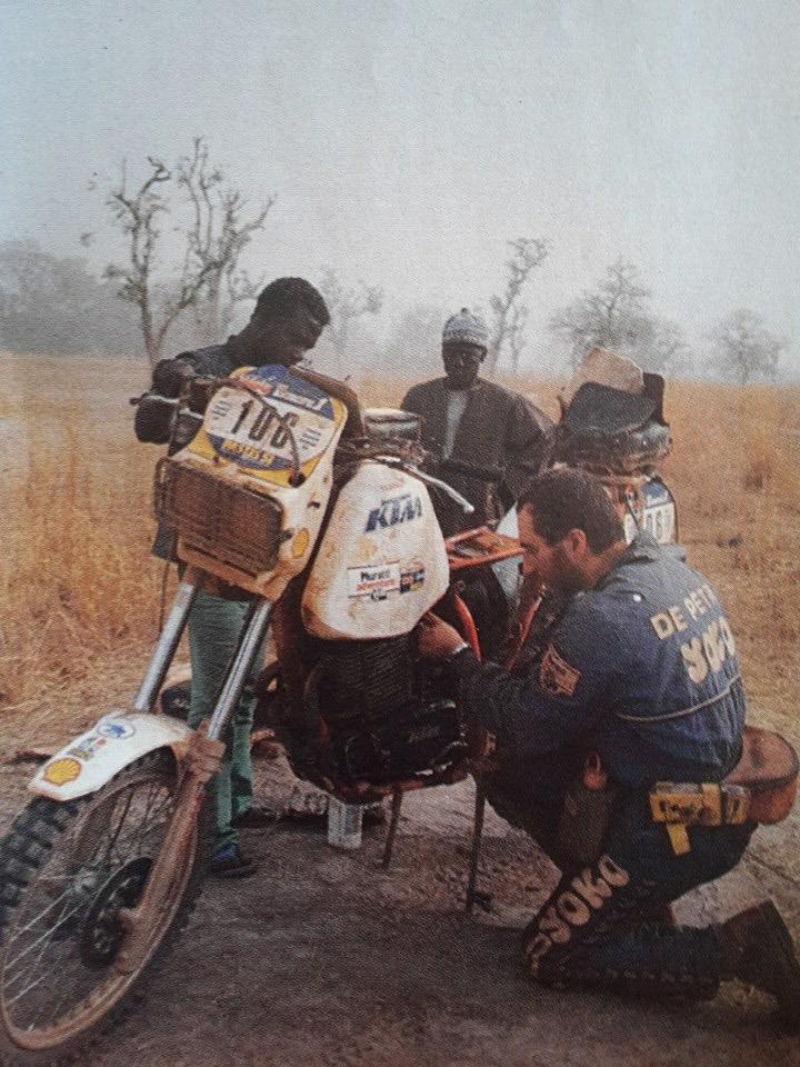 depetri 1984