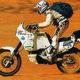 Wildbike2