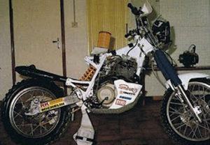 Wildbike23