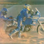 Sarron-1995